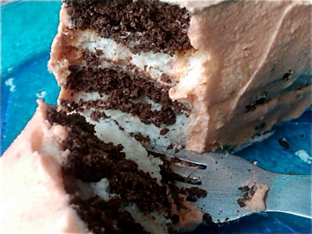 Chocolate Orange Cake Layered with Angel Food Cake