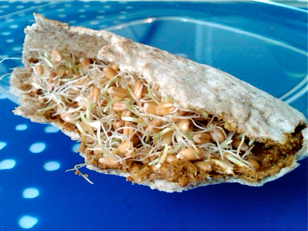 Pistachio and Sprout Pita